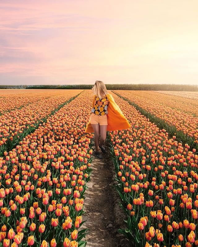 blooming fields of the netherlands 21 1 chanel in amsterdam