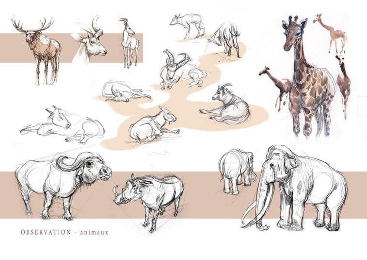 skice zivotinje jelen divokoza zirafa slon
