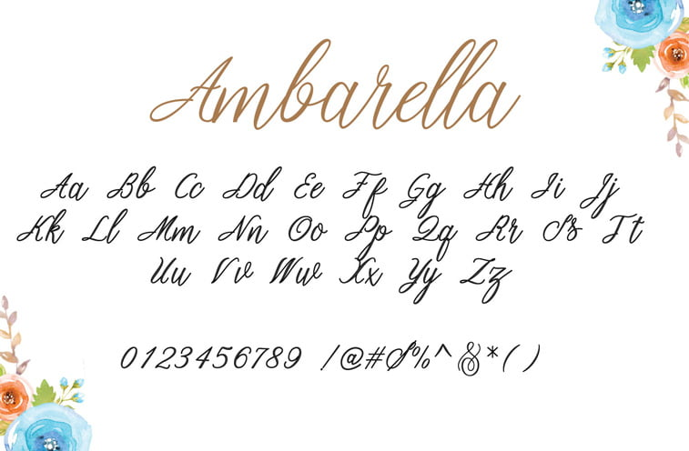ambarella script font preview