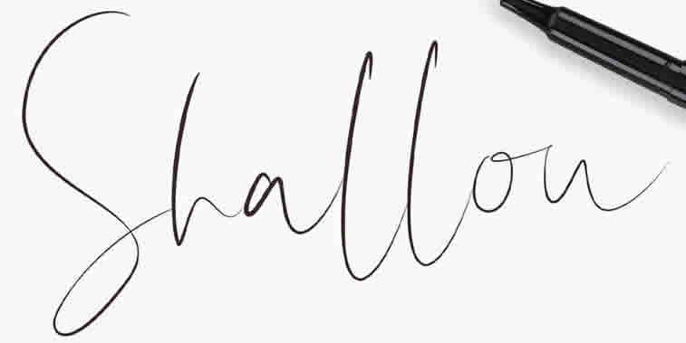25 most interesting free script fonts