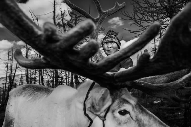 woman reindeer herder Mongolia
