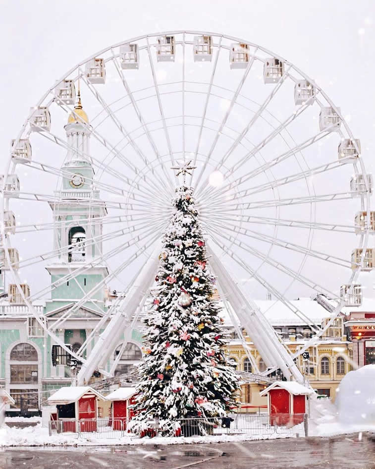 snow christmas tree observation wheel