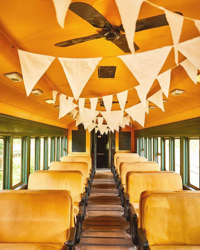 inside the train retro style flags