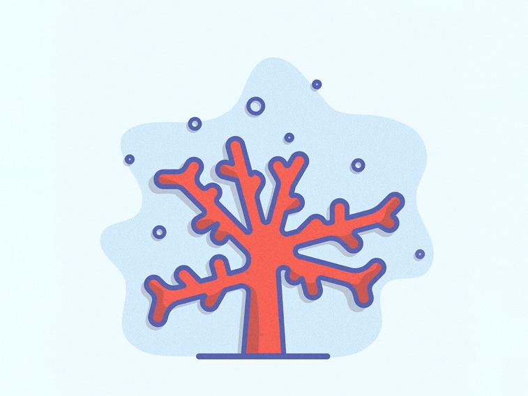 koral ilustracija living coral boja godine