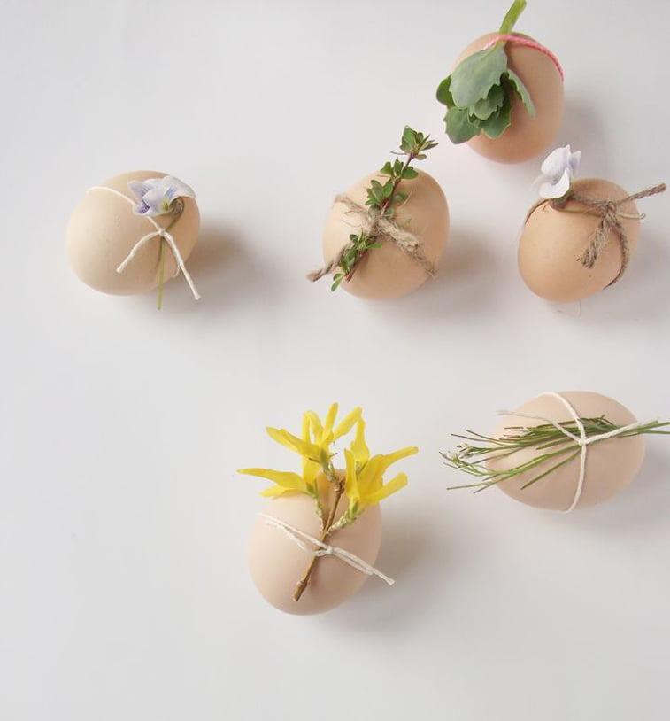uskrsnja jaja sa biljkama
