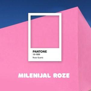 Milenijal roze: Kako je jedna boja obeležila celu generaciju
