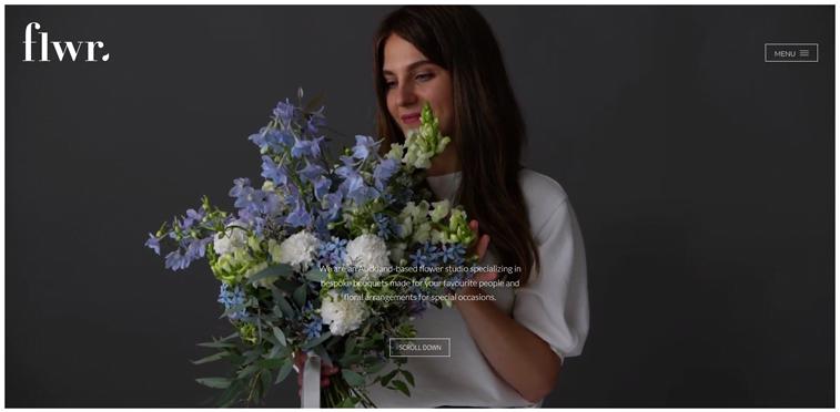 fwlr homepage screenshot