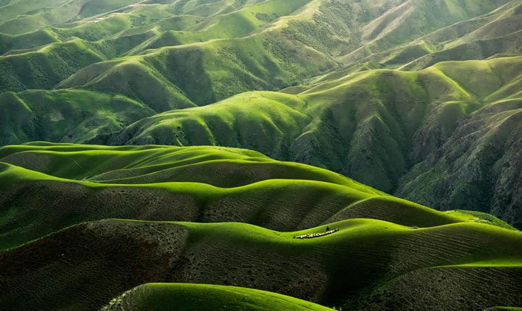 zelena brda desktop pozadina