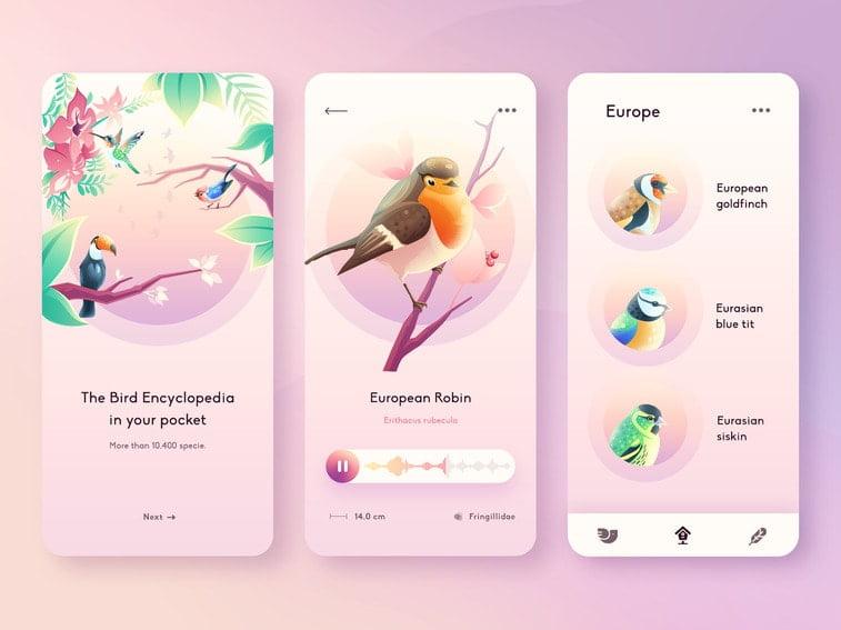 gradient birds app
