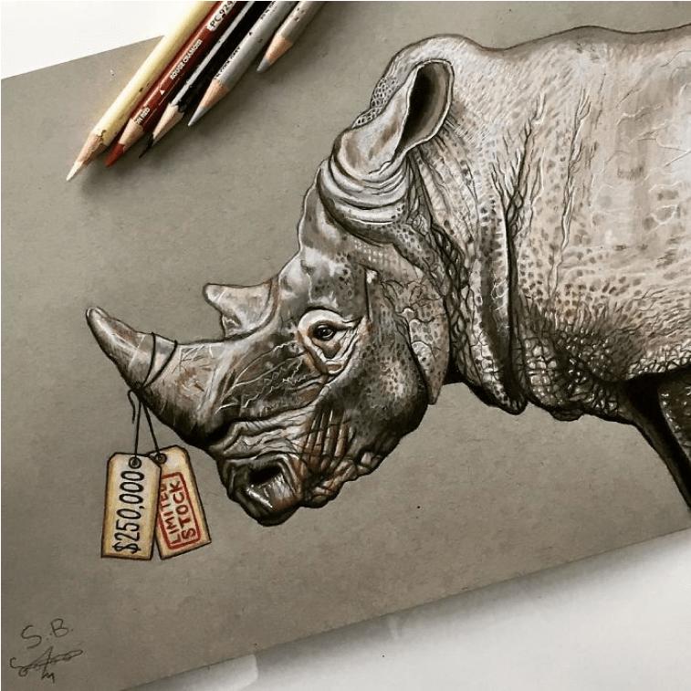 sem bejli nosorog