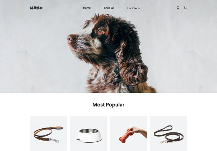 ecommerce online store shopping dog