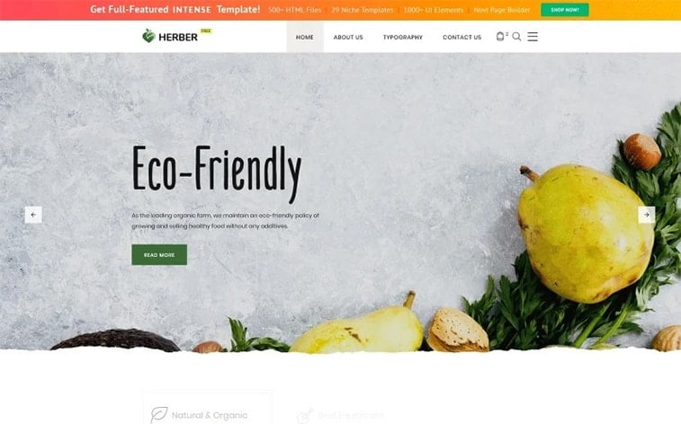 best free botstrap theme template website eco friendly organic food