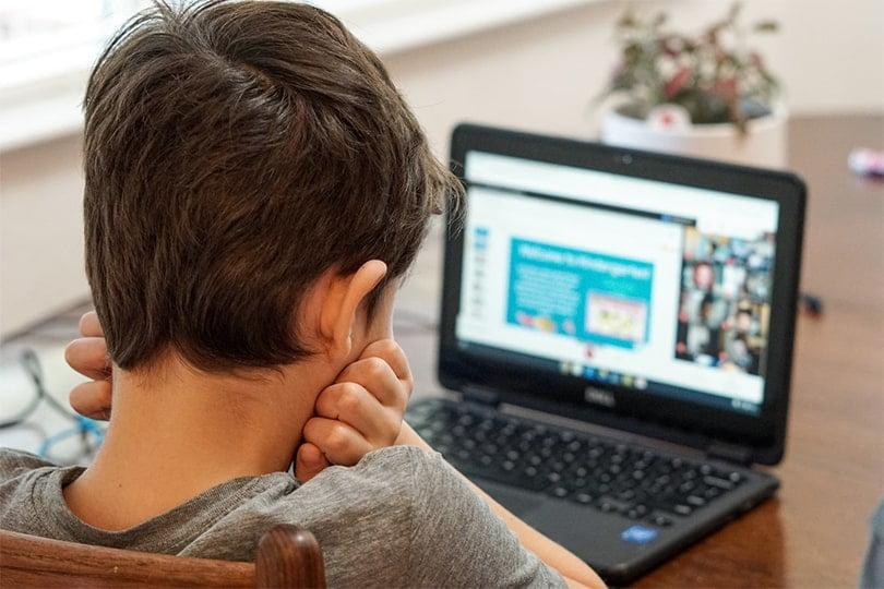 boy attending online class