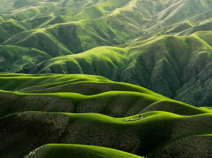 nature hd wall